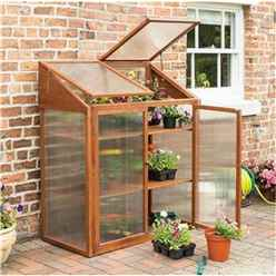 Deluxe Hardwood Mini Greenhouse